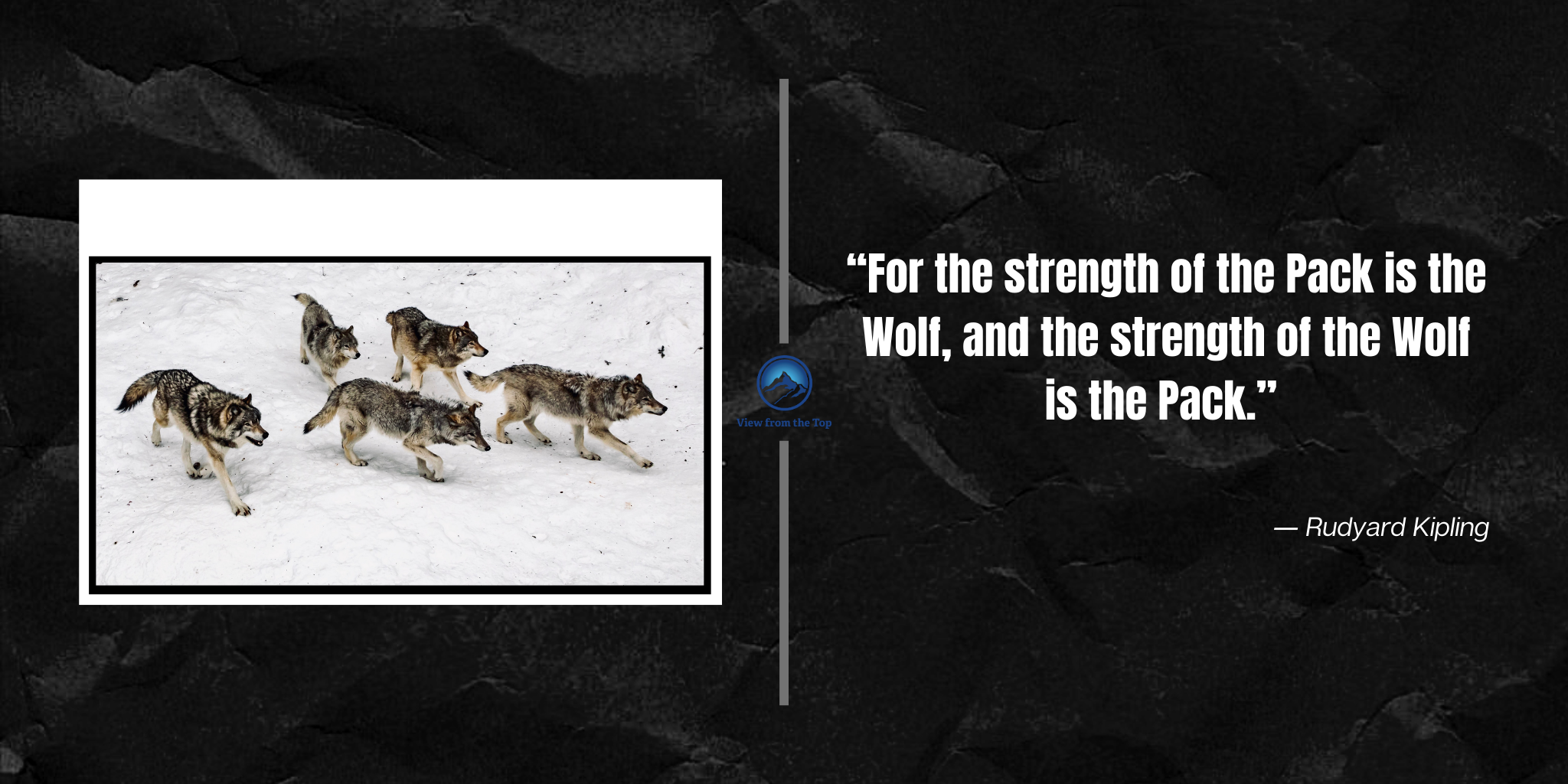 """For the strength of the Pack is the Wolf, and the strength of the Wolf is the Pack."""
