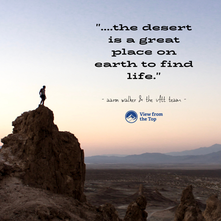 the desert is a great place on earth to find life.